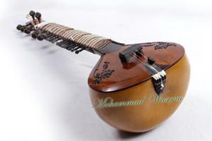 Rose Wood All Design Sitar