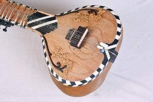 Black And White Decoration Sitar